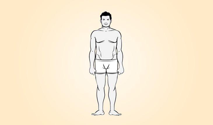 ilustração de um corpo do biotipo endomorfo