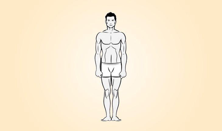 ilustração de um corpo do biotipo mesomorfo