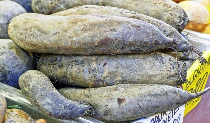 várias batatas-doces viver mais 3