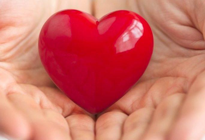 curiosidades sobre o coração