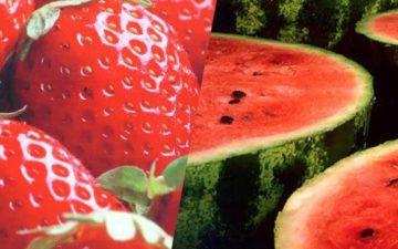 frutas para quem treina