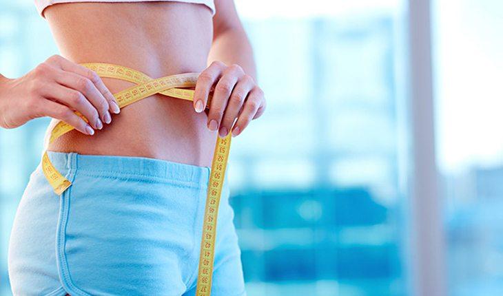 músculo e gordura
