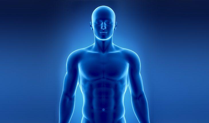 corpo humano perigos-dos-suplementos-alimentares-2-