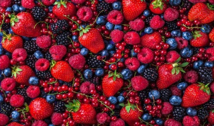 frutas vermelhas pre-treino-