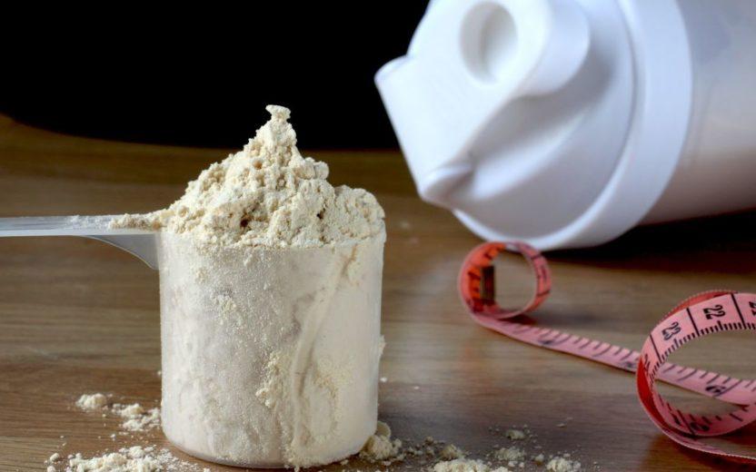 curiosidades sobre o whey protein