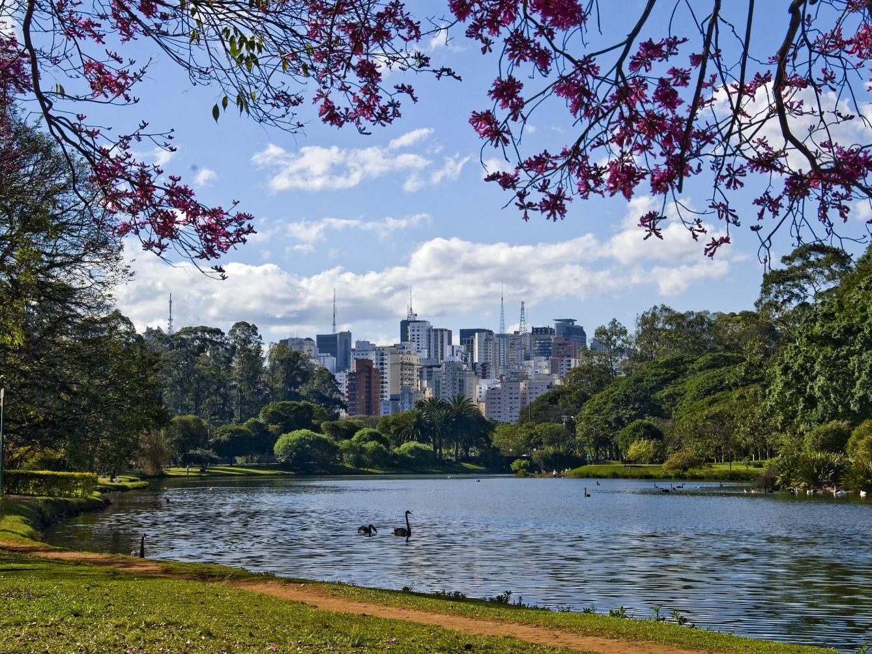 Parque Ibirapuera_10 lugares que todo corredor deve visitar