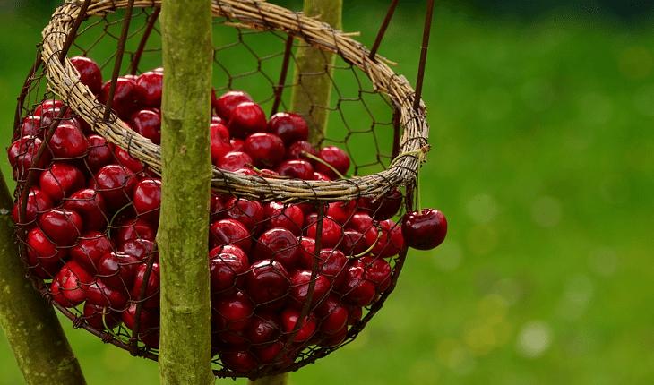 Frutas com baixo índice glicêmico: cereja