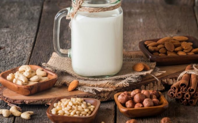receitas de leite vegetal