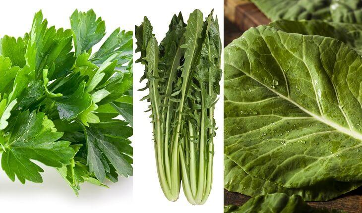 Frutas, legumes e verduras da época. Coentro, chicória e couve