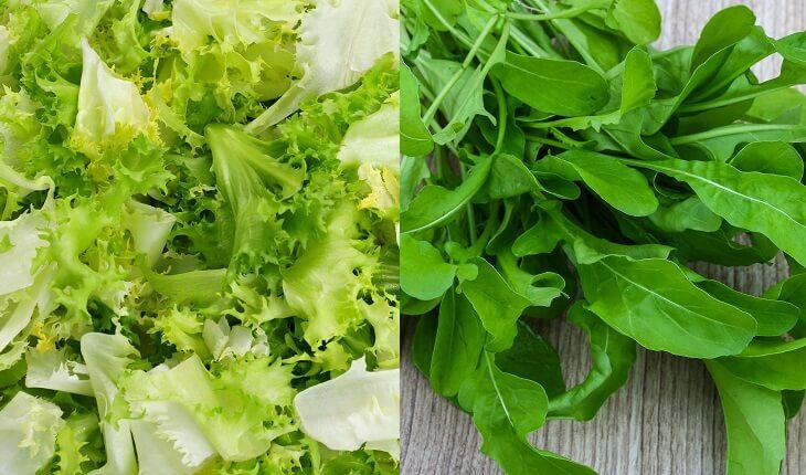 Escarola e rúcula. Frutas, legumes e verduras da época.