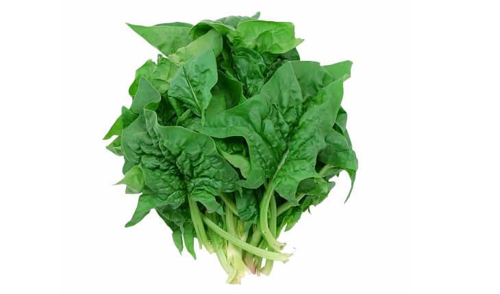 Espinafre. Benefícios da luteína