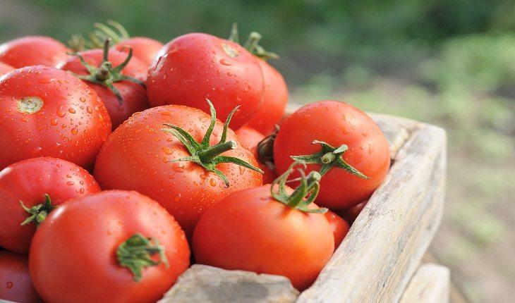 foto de tomates dispostos em uma caixa